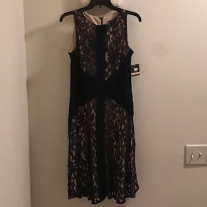 Brand new navy blue/nude lace midi dress